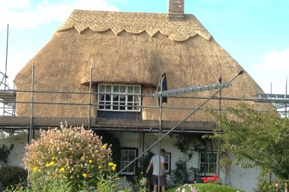 Water Reed Re-Coat - Westmarsh, Canterbury
